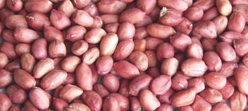 peanuts-red-skin