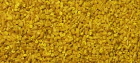 oats-groats-yellow-steel-cuts