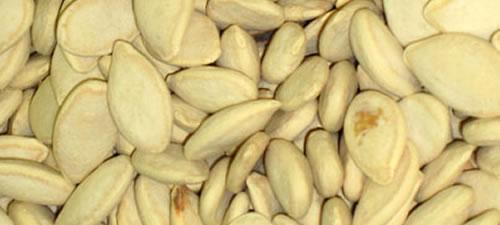 squash-seeds